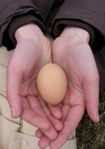 Rebecca Brings an Egg